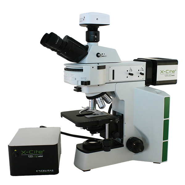Life Science Microscopes